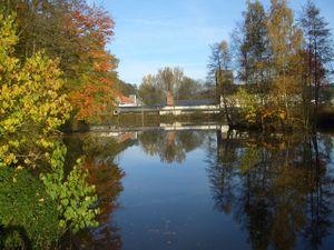 Unser Teich im Frühjahr