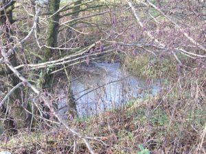 Einlauf des heutigen Hämmerbachs, direkt in der Nähe des Alten Wehrs, in den Obergraben, früher wurde er drunterhergeleitet.