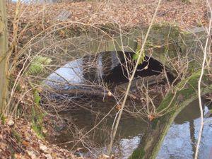 Einlauf des Wassers durch Wehr von der Wupper in den Obergraben.